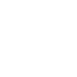 truck-icon